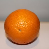 Апельсин :: Elena Gaybura