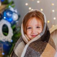 Новогоднее :: Елена Бородихина