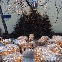 рождественские овечки :: Yana S