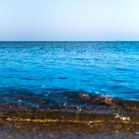 Прогулка по морю :: Viktorya Peshkova