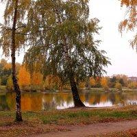 Октябрьские пейзажи :: Татьяна Ломтева