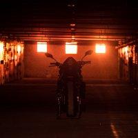 Honda Hornet 600 :: Михаил Шаров
