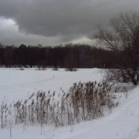 IMG_0147 - Канун Старого Нового года :: Андрей Лукьянов