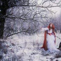 где-то в лесу... :: Екатерина Чигирь
