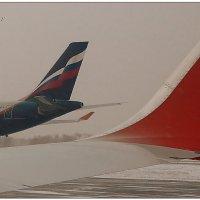 Крылья и хвосты... :: Кай-8 (Ярослав) Забелин