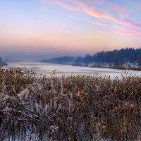 Опустился зимний вечер :: Лидия Цапко