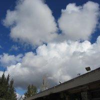 Облака после дождя :: Герович Лилия
