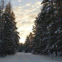 Зимняя красота :: Юлька Васковская
