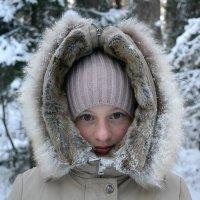 Зима :: Artem Andreev