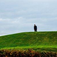 Одинокий :: Tatyana Smit