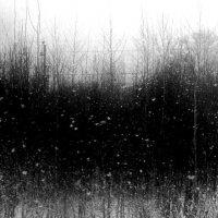 Снег идёт :: Николай Филоненко