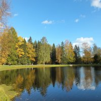 Осень в Павловске :: Николай