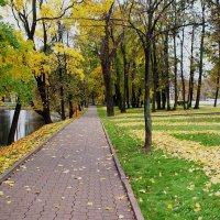 В Лефортовском парке :: Николай Дони