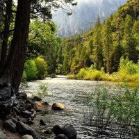 Река в горах. :: Timm Смыслов