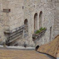 Стены Шелонского замка :: Sasha Berg