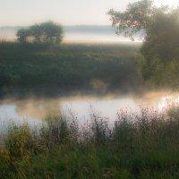 Утренний рассвет, солнце поднималось над землей... :: Николай В