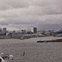 Вход в Таллиннскую гавань :: Александр Рябчиков