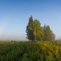 Туманная радуга :: Валентин Котляров