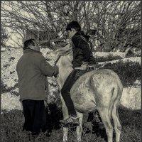 Нет коня, садись на меня!(3) :: Shmual Hava Retro