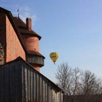 А, шарик летит! :: Gennadiy Karasev