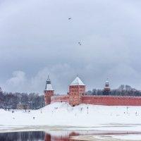 Зимние картинки ВН :: Евгений Никифоров