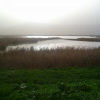 Озерол на закате :: Герович Лилия