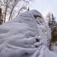 формы :: Дамир Белоколенко