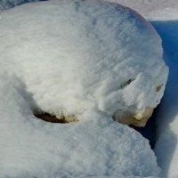 Снежная маска :: Валерий Талашов