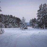 зима :: Катерина Орлова