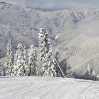 Зима на Красной Поляне 2015 :: Weskym Markova