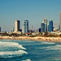 Израиль - Тель Авив :: Зеев