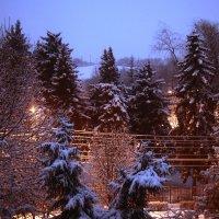 зимнее утро :: Мария Климова