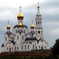 Церковь женского монастыря. :: Анфиса