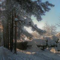 Зима из детства... :: Владимир Комышев