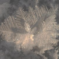 Ледяной кристалл! :: Ирина Олехнович