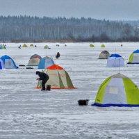 Выходной зимний день :: Андрей Куприянов