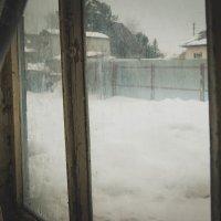 Зима-холода :: Света Кондрашова