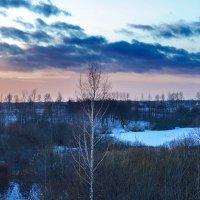 Унылая зима..... :: Анатолий Клепешнёв