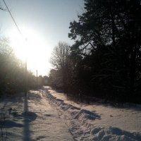 зима :: Надежда