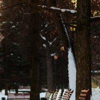 в парке :: Валерий Валвиз