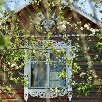 Скоро :: Нина Алексеева