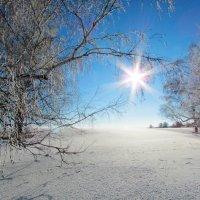 Солнечный денек :: Константин Филякин