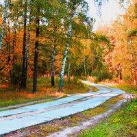 осень золотая :: Краснов  Ю Ф
