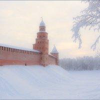 в мороз :: Евгений Никифоров