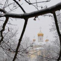 Золотые купола :: Андрей Куприянов