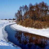 Речное зеркало зимы... :: Лесо-Вед (Баранов)