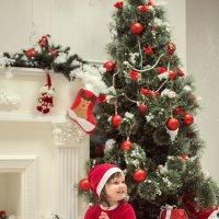 Новый год :: Ольга Антони