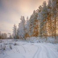Зимний пейзаж :: Дмитрий Постников