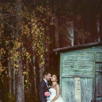 Запах леса :: Юлия Вяткина