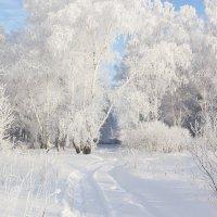 Зимние зарисовки. :: Kassen Kussulbaev